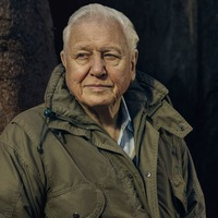 Sir David Attenborough to front 'mind-blowing' look at world of plants