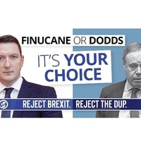 Nigel Dodds and John Finucane tone down North Belfast election leaflets in bid to win over middle ground voters