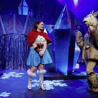 Panto reindeer head stolen from car in Belfast