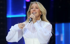 Ellie Goulding comes to rescue of driver 'T-boned' by Royal Mail lorry