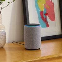 Amazon adds Alexa feature to change subject during Christmas arguments