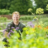 The Casual Gardener: Adam Ferguson on being keeper of Hillsborough's walled garden