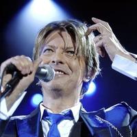 Collaborators and aficionados celebrate David Bowie's life and legacy in Dublin