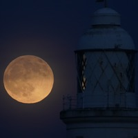 'Wolf moon' lunar eclipse delights skygazers