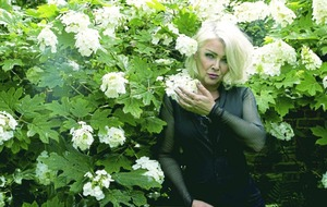 Kim Wilde: I'm proud I have survived with my sense of humour intact