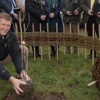 Trees grown from seeds that spent six months in space planted by Tim Peake