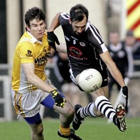 Who is the pick of the Kilcoo Branagan litter?