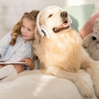 Spotify tunes into pets with personalised playlists for furry friends