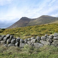 Tony Bailie's Take on Nature: Wind through Mourne ditches has a distinctive whistle