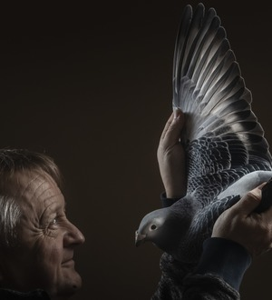In Pictures: Pigeon fanciers home in on Blackpool for show of the year