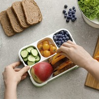 Ask the Dentist: Children's lunch boxes – the healthier option is also a cheaper option