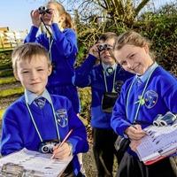 Children to take part in biggest wildlife survey in schools