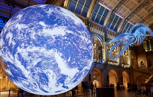 Natural History Museum declares 'planetary emergency' over climate change