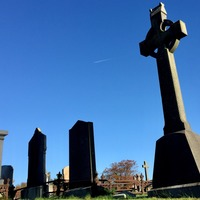 Flags and balloons banned at Lisburn and Castlereagh council graveyards