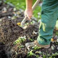 The Casual Gardener: Get ready for some groundwork