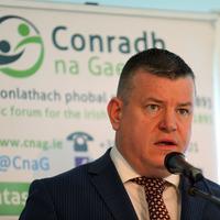 An bhfuil Acht neamhspleách Gaeilge ar fáil fríd New Decade, New Approach?