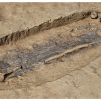'Incredibly rare' grave of Iron Age 'warrior' unearthed