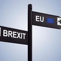 Brexit: What happens next for businesses?