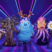 Pop stars revealed as latest contestants on The Masked Singer