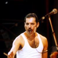 Freddie Mercury kimono worn at home to go on show