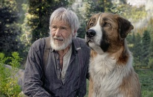 Harrison Ford adventure The Call of The Wild 'bares its fangs but seldom bites'
