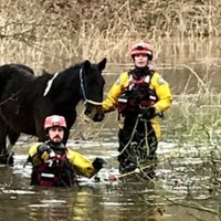 RSPCA rescuers save pony from Storm Dennis floods