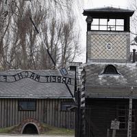 Auschwitz museum criticises scene in Hunters TV series
