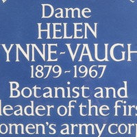 Second World War agent among six women honoured with new blue plaques