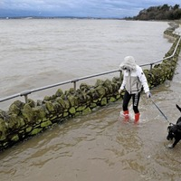 Last month second wettest February on record