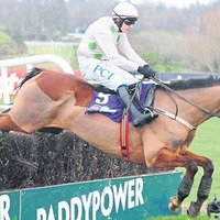 Brian Hughes: 'Incredible' Faugheen can lead younger generation a merry dance