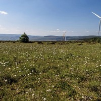 Storms contribute to record breaking month for wind energy