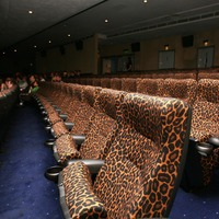 Film festival goes virtual amid coronavirus outbreak