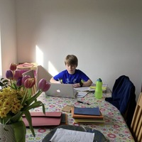 'Dad, where's the Stanley knife?' - adventures in home-schooling
