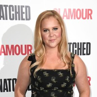 Amy Schumer takes her toddler for socially-distanced visit to her father