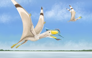 UK scientists find fourth new species of pterosaur in just a few weeks
