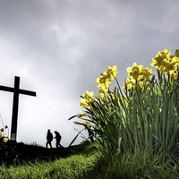 Holy Week reflection: Dr William Henry - Grab hold of God's hope this Easter