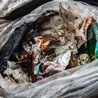 Man-made litter still affecting protected coastal areas, study finds