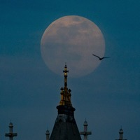 Pink supermoon graces skies over the UK
