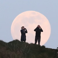 In Pictures: Dazzling pink supermoon delights stargazers