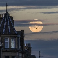 Town residents serenaded beneath supermoon with Moon River