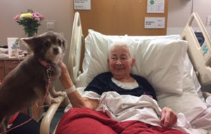 Great-grandmother from Glasgow with terminal cancer celebrates 81st after beating Covid-19