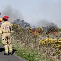Firefighters tackle 300 gorse fires in three weeks