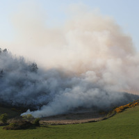 Fire crews battle gorse blazes in counties Down and Antrim