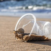 New research reveals how microplastic pollution is threatening biodiversity