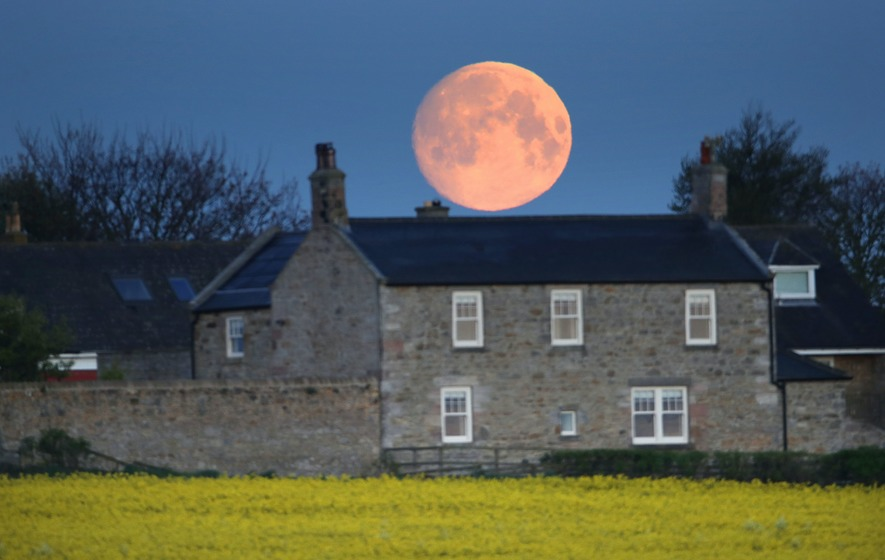 'Full Flower Moon': See the last supermoon of 2020 at its best