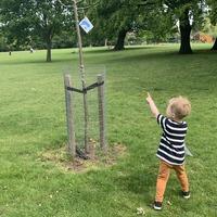 Family sparks lockdown craze by hiding Pokemon in local park