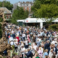 Benefits of gardens highlighted as 'virtual' Chelsea Flower Show begins