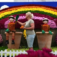 Experts hail power of gardening as Chelsea Flower Show goes online