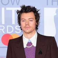 Harry Styles dedicates his Watermelon Sugar music video to 'touching'