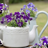10 ways to recycle old junk to use in the garden